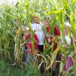 children-of-the-maize