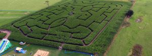 Easingwold Maize Maze in York